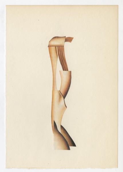 Erik Frydenborg, Full Color Bachelor No. 251, 2014. Collage on endpaper. 7.75 x 5.5 inches.
